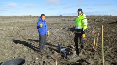 Geophysical surveillance network removed